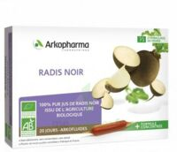 Arkofluide Bio Ultraextract Radis noir Solution buvable 20 Ampoules/10ml à BAUME-LES-DAMES