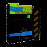 Synactifs Respigreen Bio Gélules B/10 à BAUME-LES-DAMES