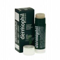 Dermophil Indien Pom Stick Girex/30g à BAUME-LES-DAMES