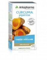 Arkogelules Curcuma Pipérine Gélules Fl/45 à BAUME-LES-DAMES