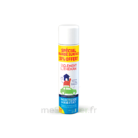 Clément Thékan Solution insecticide habitat Spray Fogger/300ml à BAUME-LES-DAMES