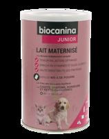 Biocanina Lait poudre maternisé B/400g à BAUME-LES-DAMES